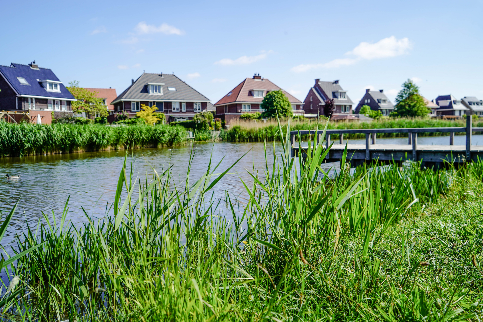 Afbeelding bij De Gouden Singel: de nieuwe groene wijk van de Gouden Buurten